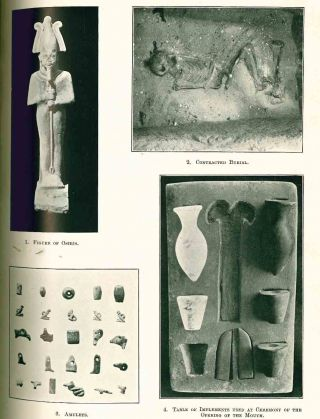Archaeological Report. Egypt Exploration Fund